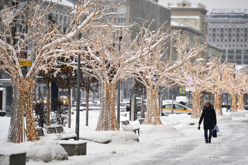 Noworoczne iluminacje na drzewach w Moskwie