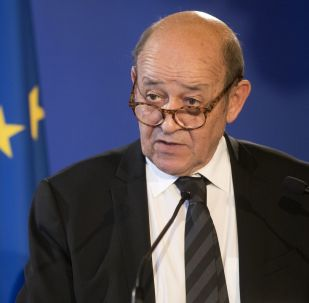 Minister spraw zagranicznych Francji Jean-Yves Le Drian