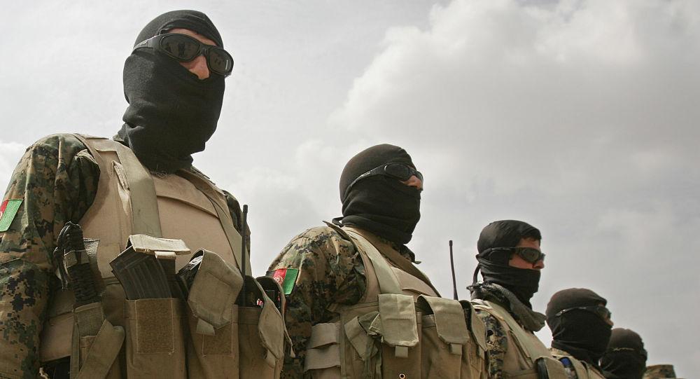 Policja antynarkotykowa Afganistanu