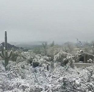 Najsilniejsze opady śniegu w historii stanu Arizona